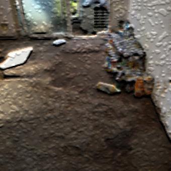ペットによる部屋の汚れ